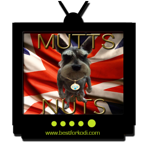 How to install The Mutts Nuts Kodi Addon